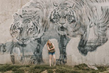 tiger parents